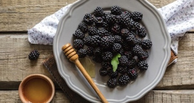 Turkish blackberries reach int'l markets with Turkish Cargo