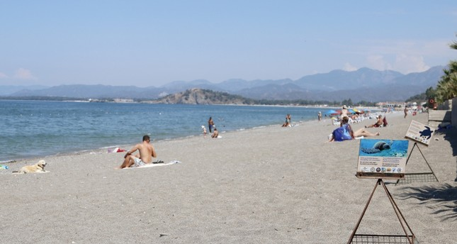 The loggerhead nests at the Çalış Beach are protected by the Sea Turtles Research, Rescue and Rehabilitation Center.