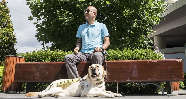 Guide dog helps veteran with a pair of eyes and love