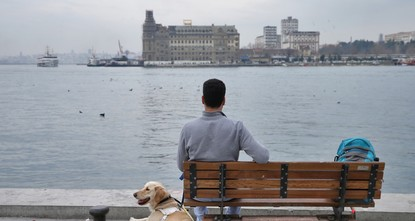 pYusuf Uçar can now go wherever he wants in a more relaxed, peaceful and safer way thanks to his guide dog, Aslan, who started living with him three-and-a-half months ago./p  pUçar, a senior in...