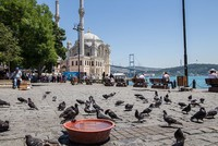 Record-breaking heat in last 106 years observed in Istanbul, temperatures will soon drop