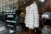 New York City mulls banning sale of fur