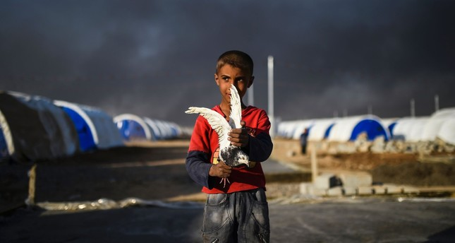 A young displaced Iraqi boy holds a pigeon at a refugee camp in the town of Qayyarah, Mosul, Oct. 22, 2016.
