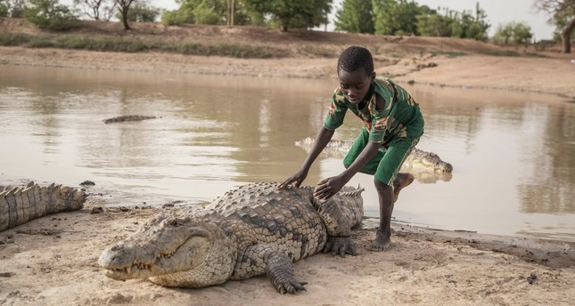 A boy leans on the back of a crocodile at a pond in Bazoule in Burkina Faso, a village which happily shares its local pond with 'sacred' crocodiles.