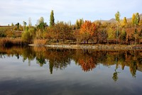 Şebinkarahisar: A tranquil sea of autumn colors