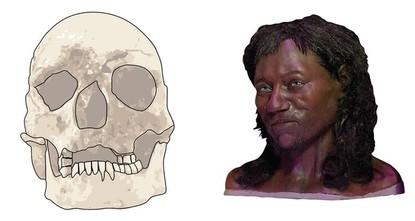 pNordeuropäer waren einer Studie zufolge länger dunkelhäutig als bislang angenommen. Das legt die DNA-Analyse von Überresten eines 10.000 Jahre alten Körpers aus Großbritannien nahe, wie Londoner...