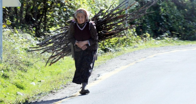 An old woman living in Gölköy carries tree branches on her back.