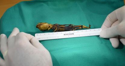 Mystery of 'alien skeleton' finally solved