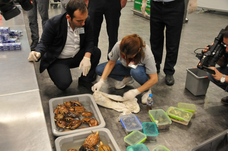 Customs officials examine the contents of a lost luggage belonging to a Russian passenger at Istanbul's Atatu00fcrk Airport (IHA Photo)