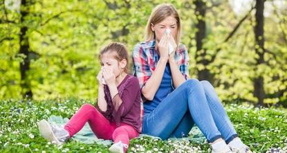Pollen warning app launched in İzmir
