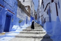 In Morocco, a blue tourist town is turning green