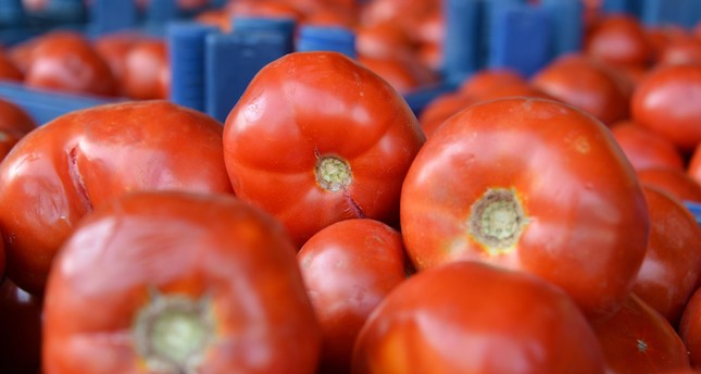 Summer market specialties: What's in season?