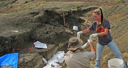 Scientists discover fossils revealing how meteor struck Earth 66 million years ago