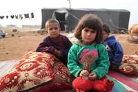 الاتحاد الأوروبي يمنح الأردن ولبنان 300 مليون يورو لدعم اللاجئين فيهما
