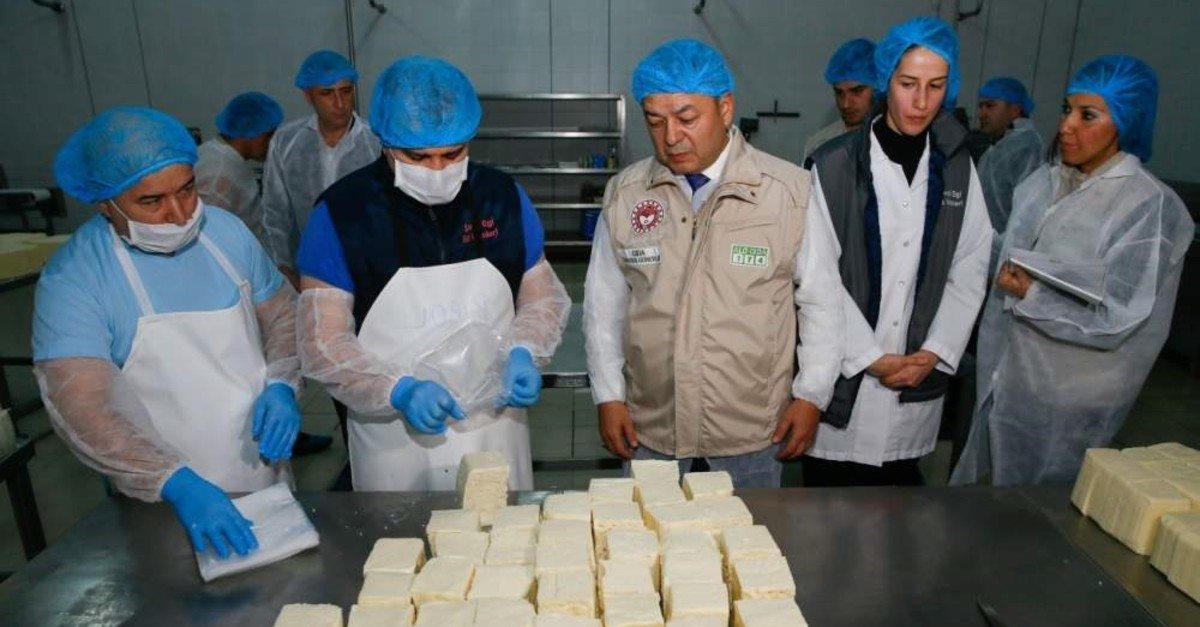 Ministry officials inspect cheese produced at a dairy factory, ?zmir, Feb. 17, 2020. (AA Photo)