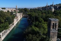 Şanlıurfa in autumn: Discover the Pool of Sacred Fish