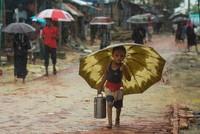 Rohingya refugees agree to move to island, Bangladesh says