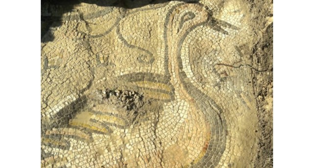 Turkish farmer discovers ancient mosaic of bird in southeastern Turkey's Adıyaman province