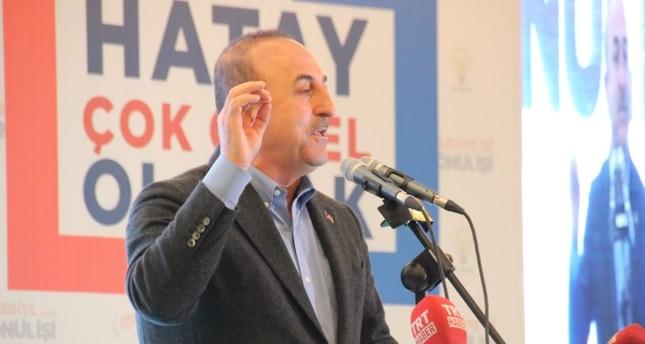 تشاوش أوغلو ينتقد حظر النمسا شعار حزب تركي