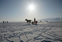Visitors and locals enjoy sledding, fishing on northeastern Turkey's frozen Lake Çıldır