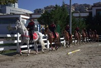Horsemen of order: Istanbul's mounted police