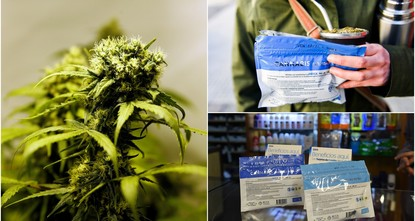 pPharmacies in Uruguay started selling marijuana Wednesday under a four-year-old law that has made the small South American country the first in the world to legalize pot from production to...