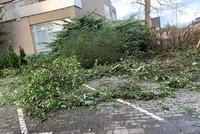 Unwetter richten hohe Schäden an