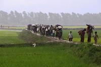President Erdoğan to discuss Rohingya Muslims with Myanmar's Aung San Suu Kyi