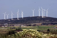 Second wind farm tender draws high investor interest to Turkey