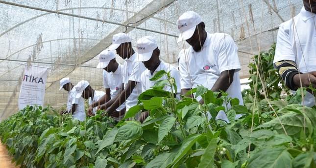تركيا تساهم في تطوير الزراعة في الصومال