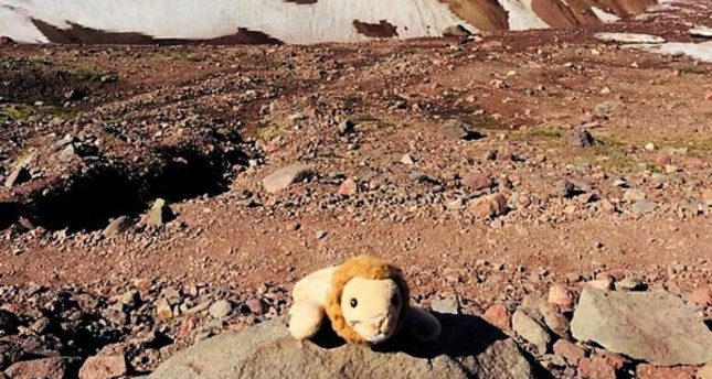 This photo provided by Holly Spaman shows a small stuffed lion she found along the Broken Top Trail near Bend, Ore., July 16, 2018. (AP Photo)