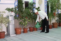 Imam makes a garden in mosque, puts kids in charge of the plants
