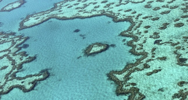 Great Barrier Reef 'valued' at $56B