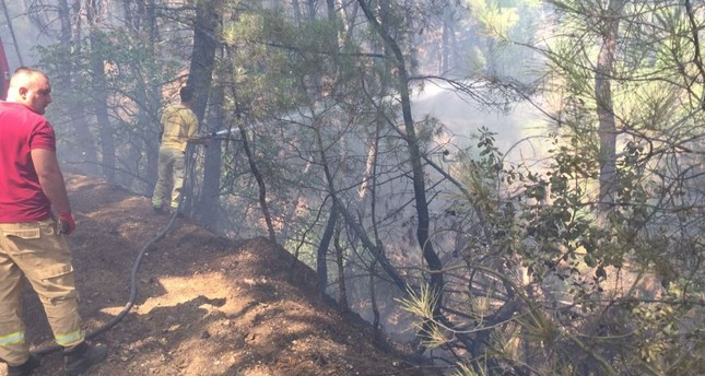 Firefighters spray water to cool off a charred part of the forest.
