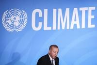 «Турция — лидер в сфере возобновляемой энергетики»