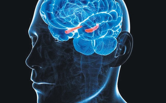 'Sci-fi' cancer therapy fights brain tumors, study finds