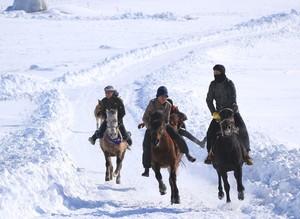 Жители Карлыова тренируют лошадей в снежную погоду