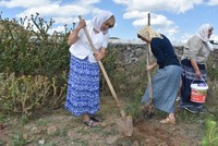 Grandchildren follow their ancestors from Canada to Turkey's Kars