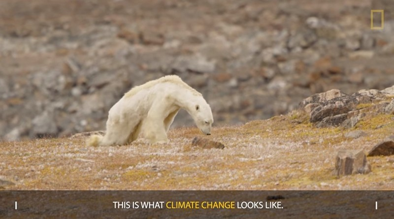 Screen grab from official National Geographic channel on Youtube.com