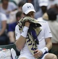 Querrey knocks limping Murray out of Wimbledon