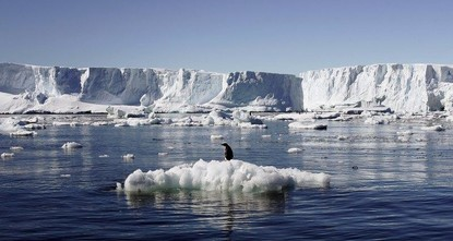 Sea ice around Antarctica has shrunk to the smallest annual extent on record after years of resisting a trend of man-made global warming, preliminary U.S. satellite data showed on Tuesday.br / br...