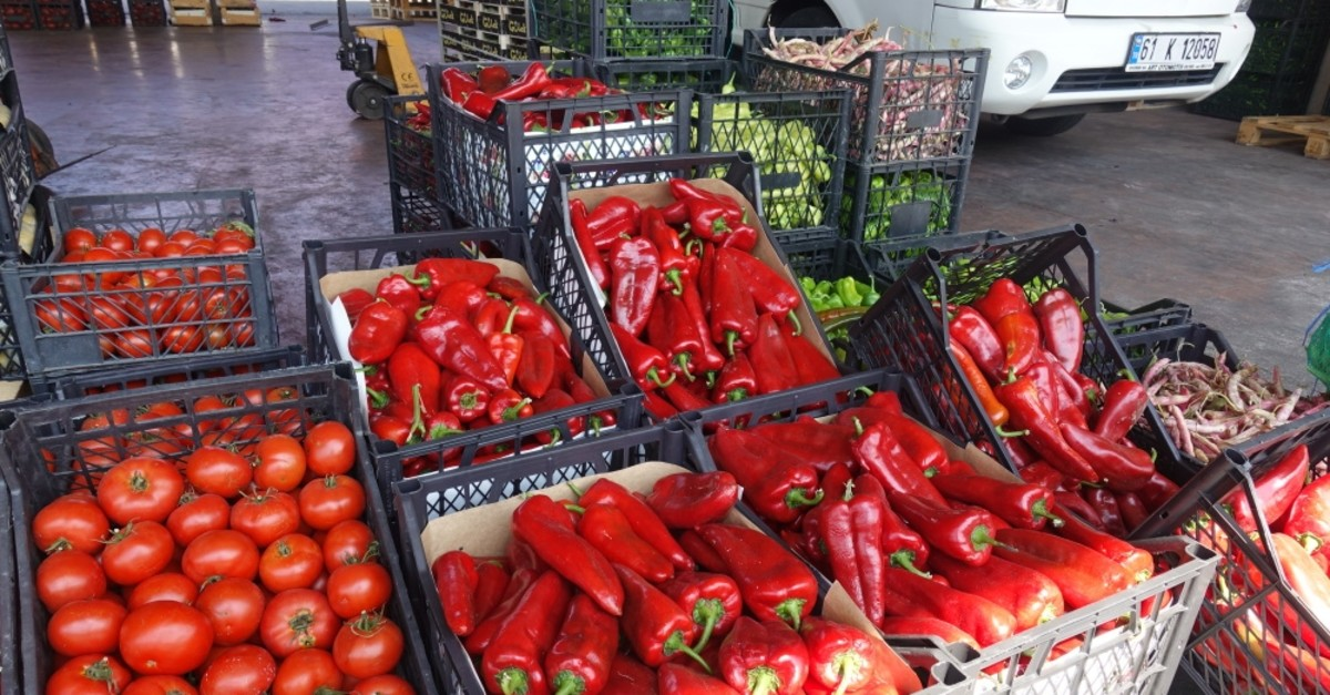 Turkey exported around 2 million tons of fresh fruits and vegetables to 114 countries in the first eight months of the year.