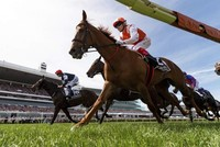 Vow and Declare wins Melbourne Cup