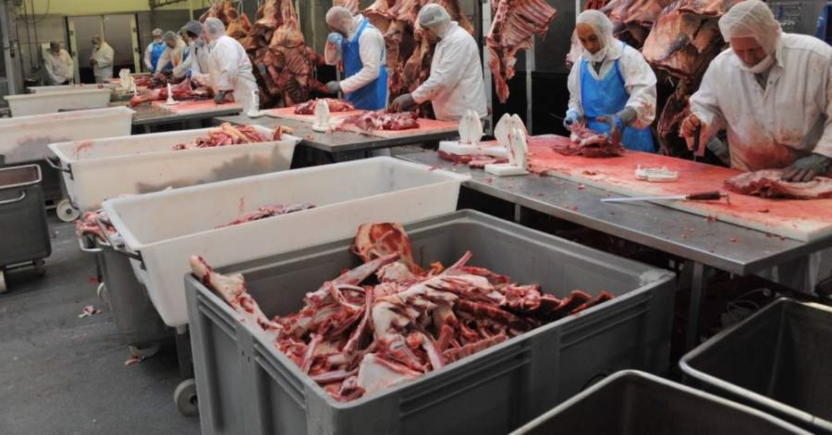 The two Turkish businessmen's slaughterhouse processes about 50 tons of meat daily. (AA Photo)