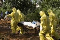 Lassa fever kills 41 in Nigeria amid global coronavirus scare