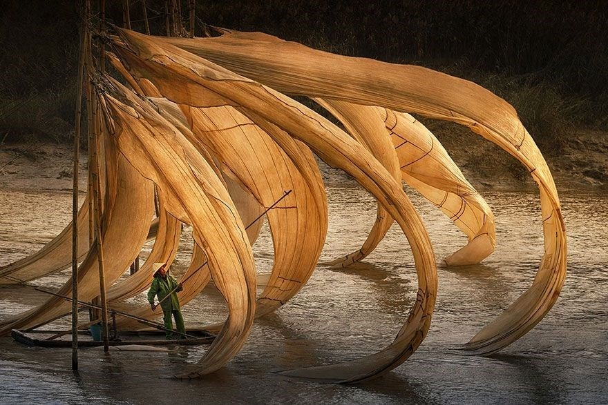 Flying Fishing Nest, China - 3rd place, General Color