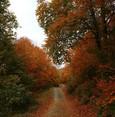 Amanos Mountains show full glory of autumn