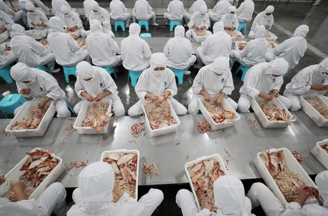 workers sorting dried seafood for export at a factory in Lianyungang in China's eastern Jiangsu province. (AFP Photo)