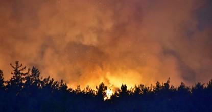 pInmitten der Hitzewelle, die seit vergangener Woche das ganze Land umgibt, brach nun ein Waldbrand in der Nähe der drittgrößten türkischen Stadt Izmir aus. Der Brand bedroht nicht nur die...