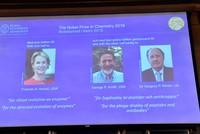 Нобелевская премия по химии-2018 присуждена за работы по направленной эволюции молекул
